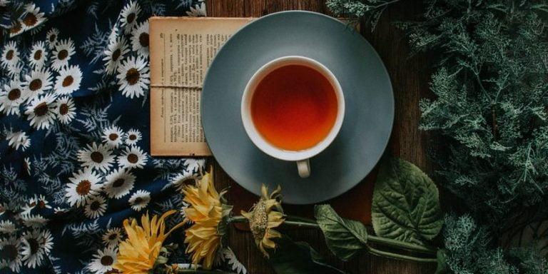 Top ceaiuri numai bune de servit în cadrul sărbătorilor